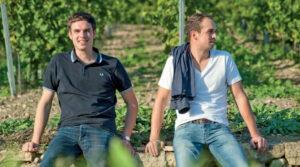 Weinanbaugebiet Rheinhessen: Weingut Bischel