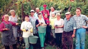 Weinanbaugebiet Franken: Weingut Alois und Jürgen Hofmann